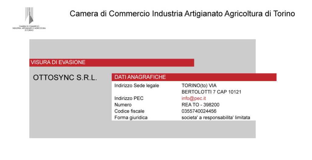 Esempio visura camerale di azienda con sede legale a Torino